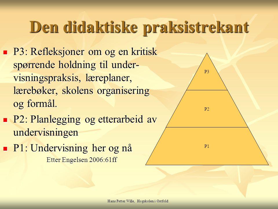 Hans Petter Wille, Høgskolen i Østfold P3: Refleksjoner om og en kritisk spørrende holdning til under- visningspraksis, læreplaner, lærebøker, skolens