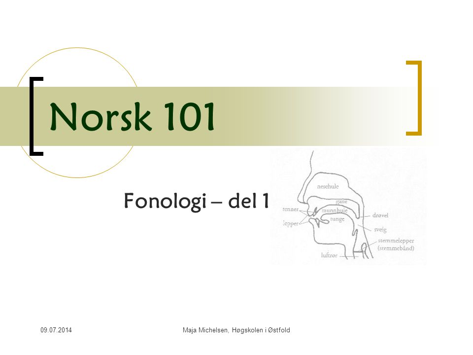 09.07.2014Maja Michelsen, Høgskolen i Østfold Norsk 101 Fonologi – del 1