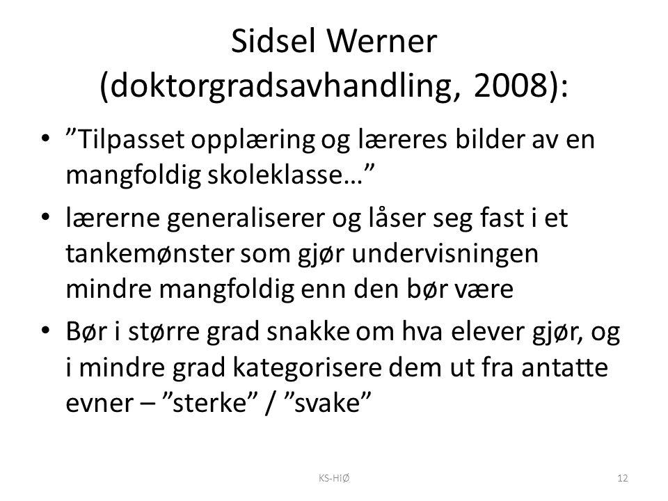 """Sidsel Werner (doktorgradsavhandling, 2008): """"Tilpasset opplæring og læreres bilder av en mangfoldig skoleklasse…"""" lærerne generaliserer og låser seg"""