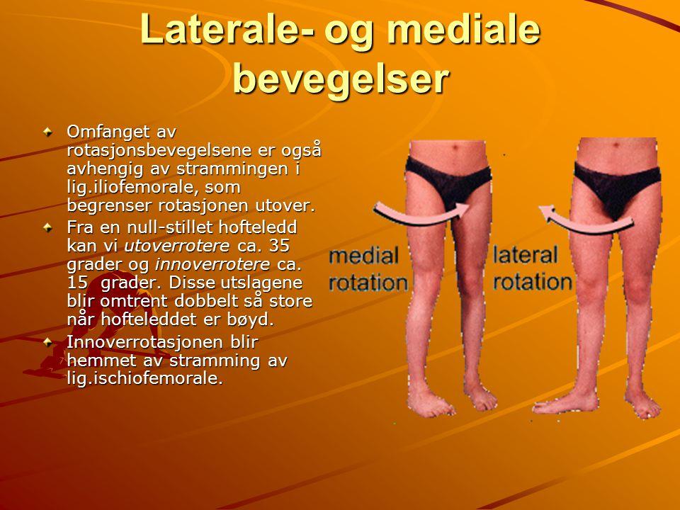 Laterale- og mediale bevegelser Omfanget av rotasjonsbevegelsene er også avhengig av strammingen i lig.iliofemorale, som begrenser rotasjonen utover.