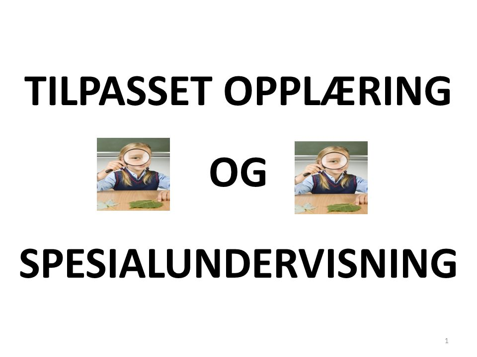 TILPASSET OPPLÆRING OG SPESIALUNDERVISNING 1