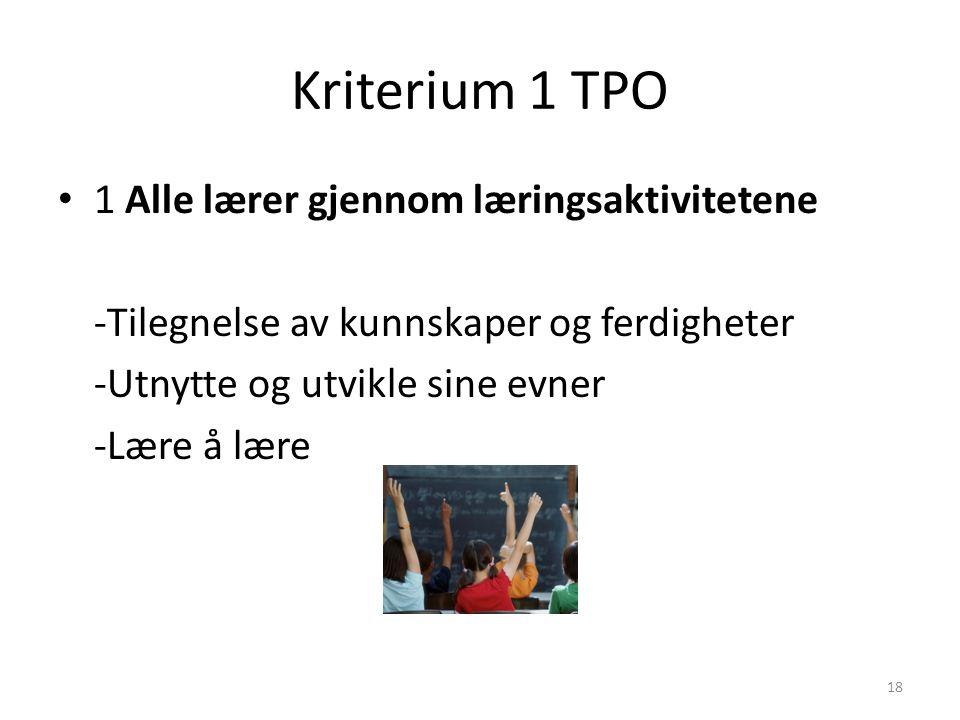 18 Kriterium 1 TPO 1 Alle lærer gjennom læringsaktivitetene -Tilegnelse av kunnskaper og ferdigheter -Utnytte og utvikle sine evner -Lære å lære