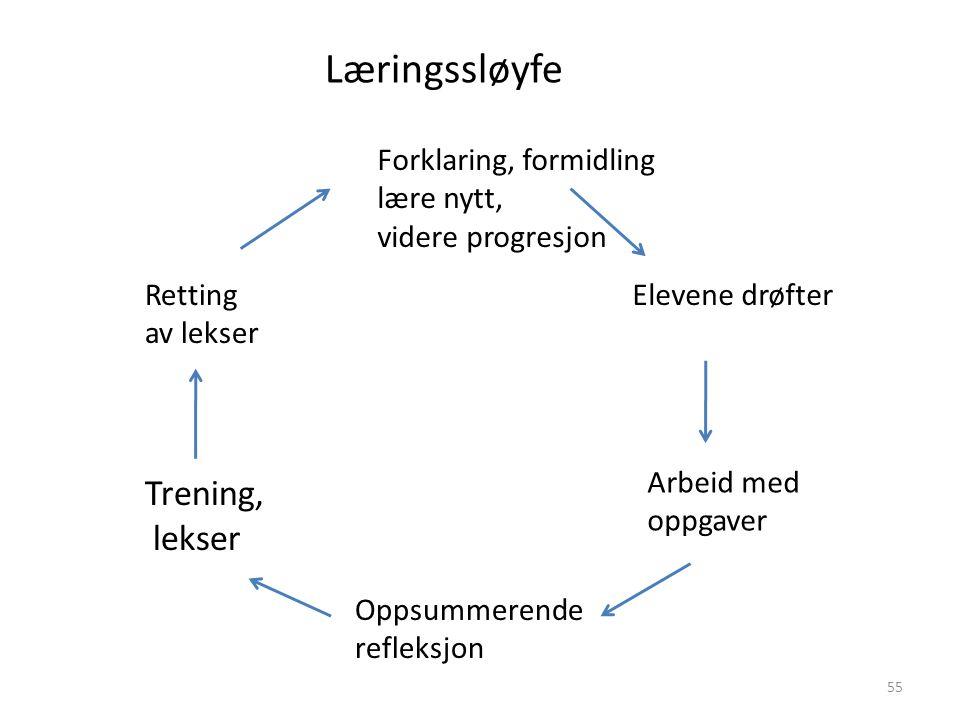 Forklaring, formidling lære nytt, videre progresjon Elevene drøfter Arbeid med oppgaver Oppsummerende refleksjon Trening, lekser Retting av lekser Lær