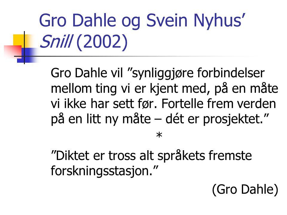 Gro Dahle og Svein Nyhus' Snill (2002) Gro Dahle vil synliggjøre forbindelser mellom ting vi er kjent med, på en måte vi ikke har sett før.
