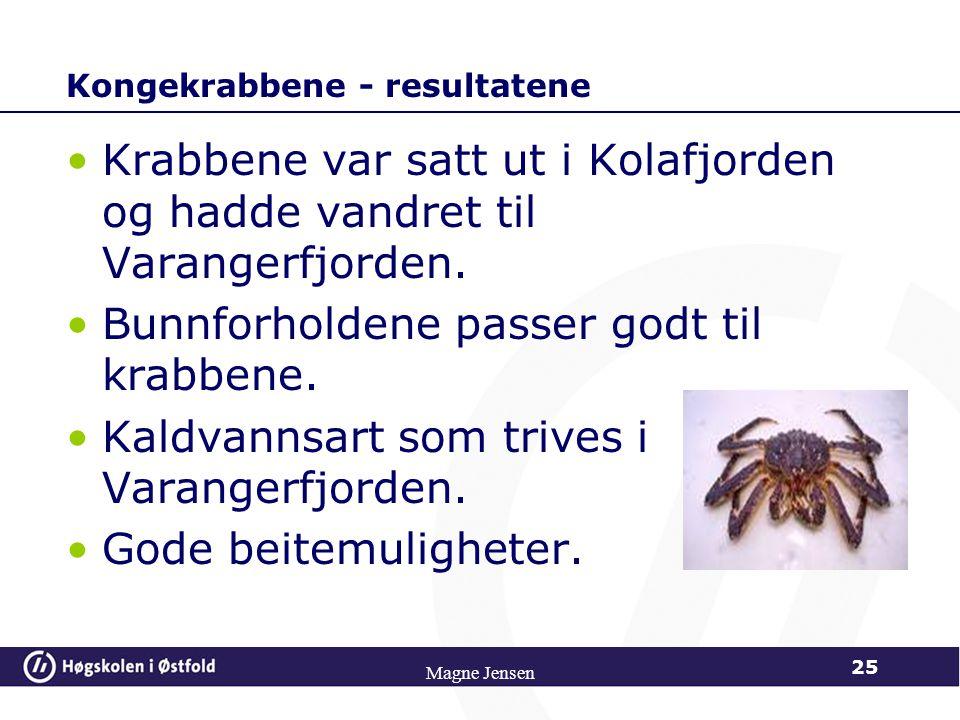 Magne Jensen 25 Kongekrabbene - resultatene Krabbene var satt ut i Kolafjorden og hadde vandret til Varangerfjorden. Bunnforholdene passer godt til kr