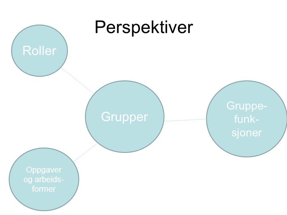 Perspektiver Grupper Roller Oppgaver og arbeids- former Gruppe- funk- sjoner