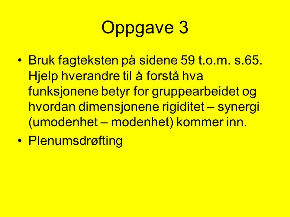 Oppgave 3 Bruk fagteksten på sidene 59 t.o.m. s.65. Hjelp hverandre til å forstå hva funksjonene betyr for gruppearbeidet og hvordan dimensjonene rigi