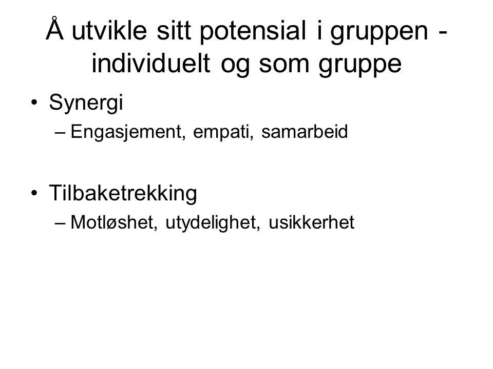 Å utvikle sitt potensial i gruppen - individuelt og som gruppe Synergi –Engasjement, empati, samarbeid Tilbaketrekking –Motløshet, utydelighet, usikkerhet