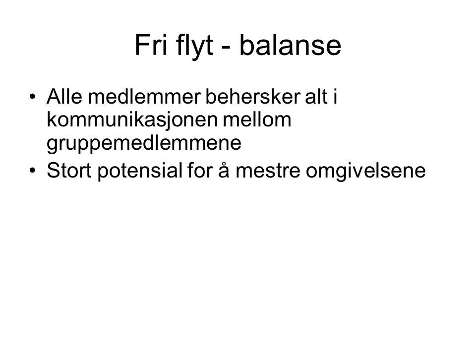 Fri flyt - balanse Alle medlemmer behersker alt i kommunikasjonen mellom gruppemedlemmene Stort potensial for å mestre omgivelsene