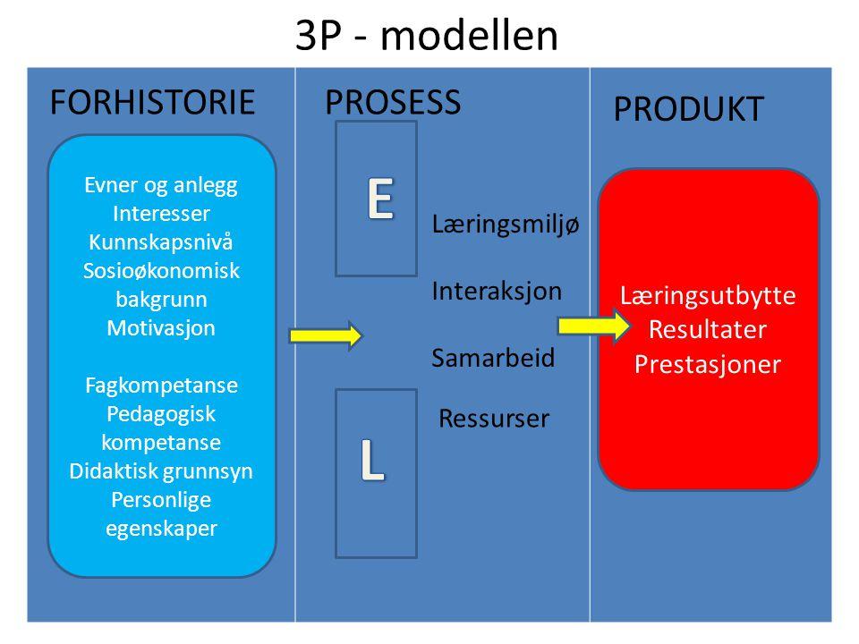 3P - modellen FORHISTORIE Evner og anlegg Interesser Kunnskapsnivå Sosioøkonomisk bakgrunn Motivasjon Fagkompetanse Pedagogisk kompetanse Didaktisk gr