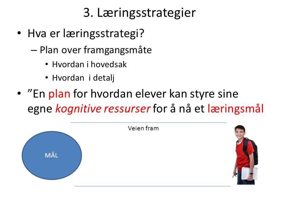 """3. Læringsstrategier Hva er læringsstrategi? – Plan over framgangsmåte Hvordan i hovedsak Hvordan i detalj """"En plan for hvordan elever kan styre sine"""