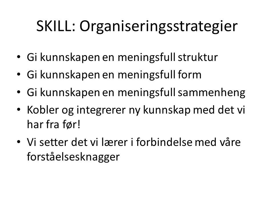 SKILL: Organiseringsstrategier Gi kunnskapen en meningsfull struktur Gi kunnskapen en meningsfull form Gi kunnskapen en meningsfull sammenheng Kobler