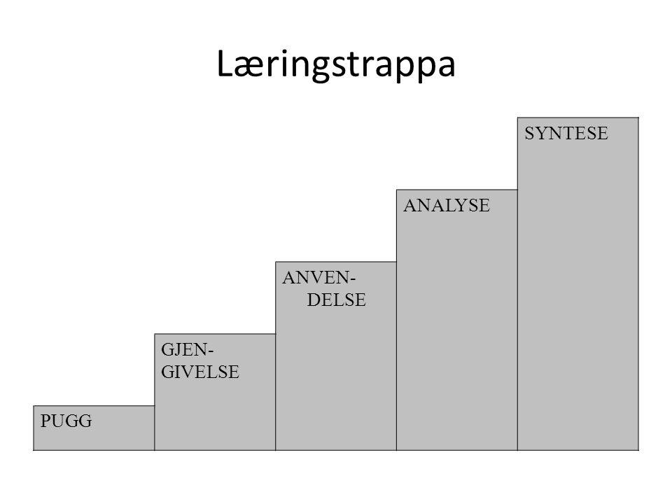 Læringstrappa SYNTESE ANALYSE ANVEN- DELSE GJEN- GIVELSE PUGG