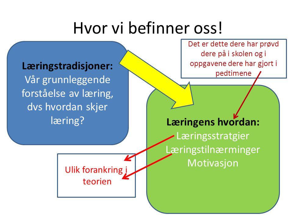 Motivasjon Definisjon: Motivasjon er en prosess som setter i gang og opprettholder målorientert aktivitet Ytre motivasjon Indre motivasjon