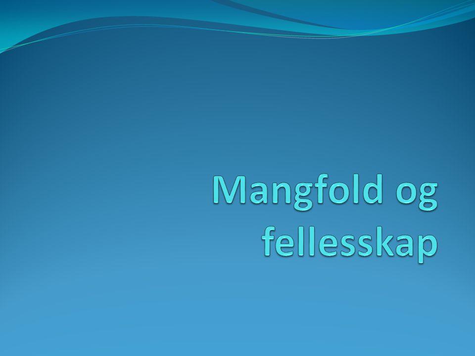 Likeverd Mangfold Fellesskap