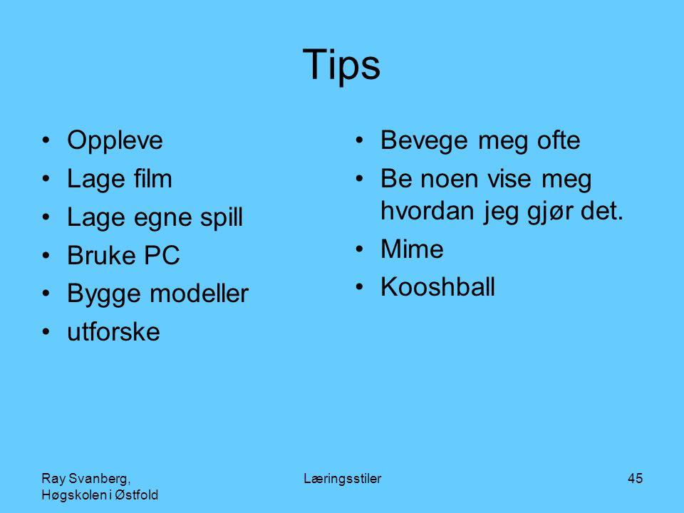 Ray Svanberg, Høgskolen i Østfold Læringsstiler45 Tips Oppleve Lage film Lage egne spill Bruke PC Bygge modeller utforske Bevege meg ofte Be noen vise meg hvordan jeg gjør det.
