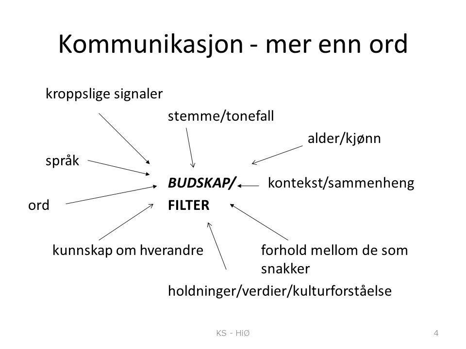 Kommunikasjon - mer enn ord kroppslige signaler stemme/tonefall alder/kjønn språk BUDSKAP/ kontekst/sammenheng ordFILTER kunnskap om hverandre forhold