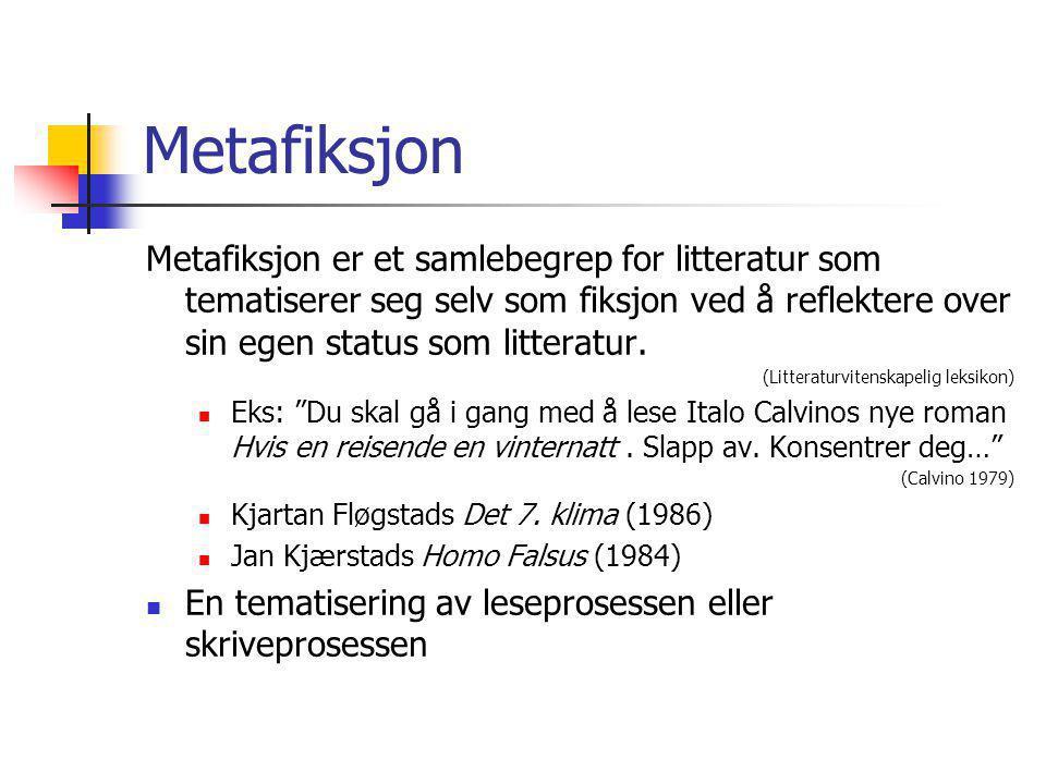 Metafiksjon Metafiksjon er et samlebegrep for litteratur som tematiserer seg selv som fiksjon ved å reflektere over sin egen status som litteratur. (L