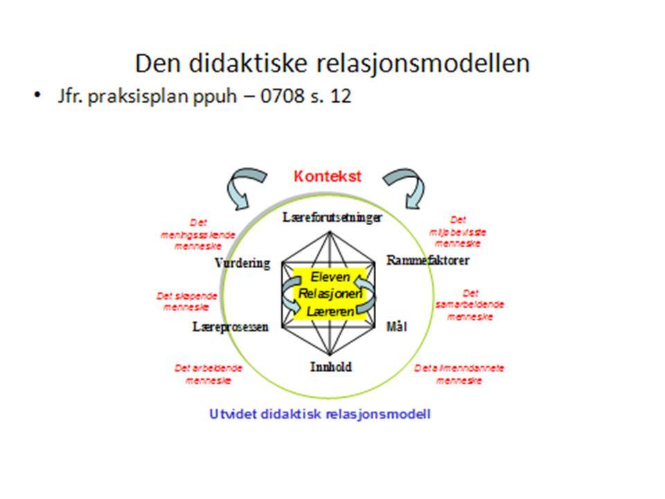 Didaktisk refleksjon og planlegging krever kunnskap om:  Tospråklig utvikling og tospråklighet/flerspråklighet  Andrespråktilegnelse  Kulturforståelse  Læring i en tospråklig/flerspråklig situasjon  Pedagogiske metoder  Elevkunnskap generelt.