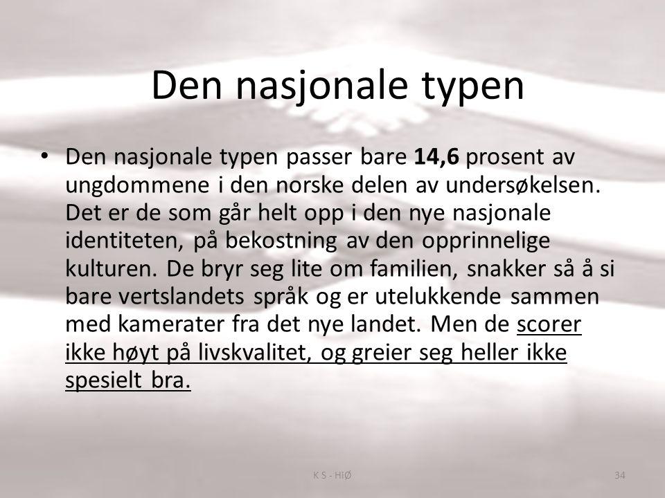 Den nasjonale typen Den nasjonale typen passer bare 14,6 prosent av ungdommene i den norske delen av undersøkelsen.