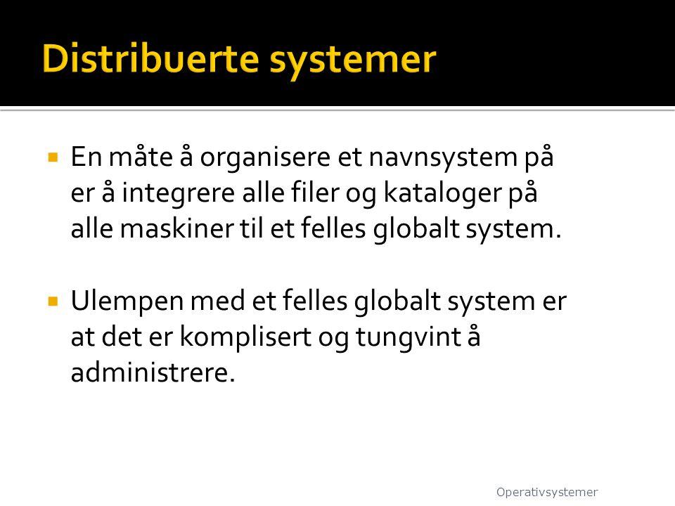  En måte å organisere et navnsystem på er å integrere alle filer og kataloger på alle maskiner til et felles globalt system.  Ulempen med et felles