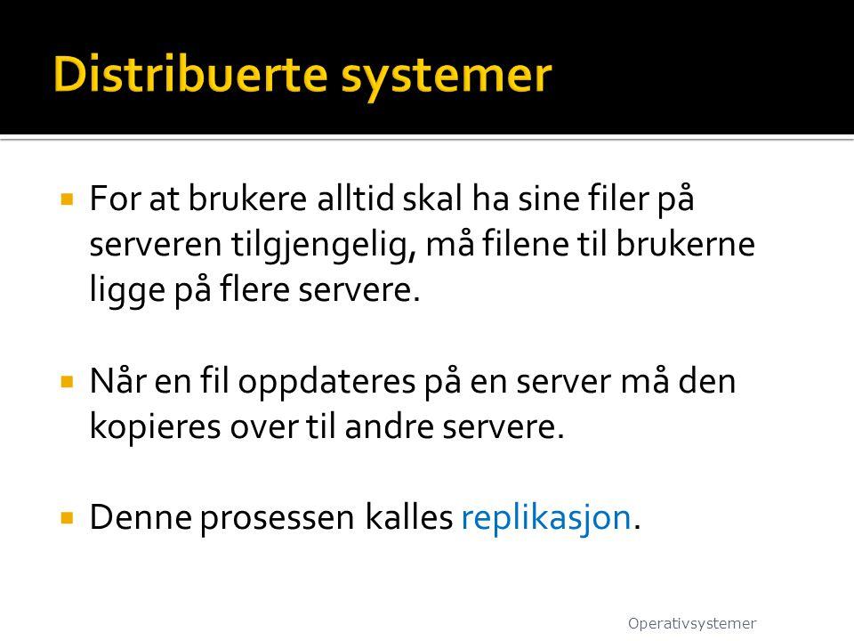  For at brukere alltid skal ha sine filer på serveren tilgjengelig, må filene til brukerne ligge på flere servere.  Når en fil oppdateres på en serv