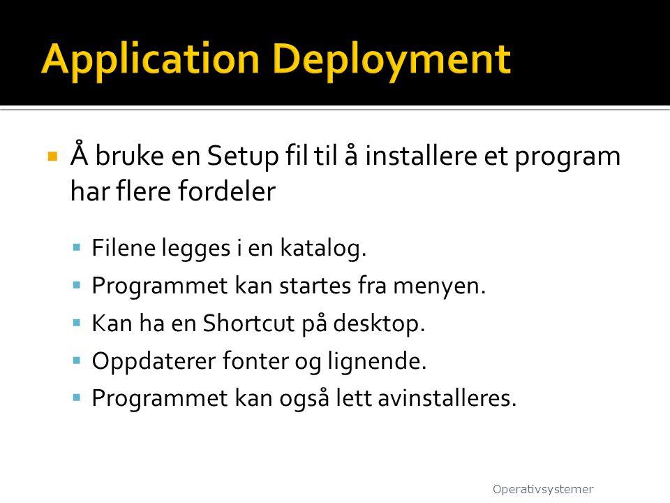 Å bruke en Setup fil til å installere et program har flere fordeler  Filene legges i en katalog.  Programmet kan startes fra menyen.  Kan ha en S
