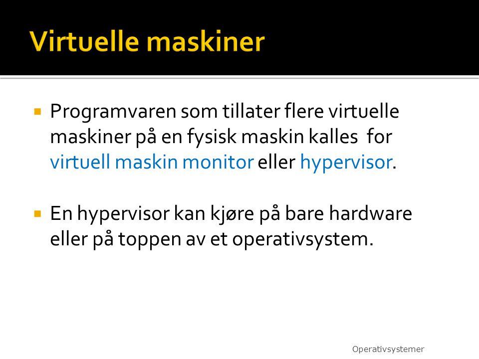  Programvaren som tillater flere virtuelle maskiner på en fysisk maskin kalles for virtuell maskin monitor eller hypervisor.  En hypervisor kan kjør