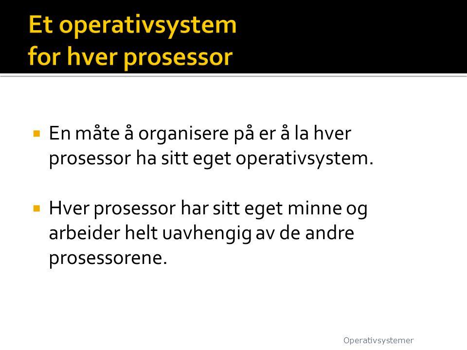  En måte å organisere på er å la hver prosessor ha sitt eget operativsystem.  Hver prosessor har sitt eget minne og arbeider helt uavhengig av de an