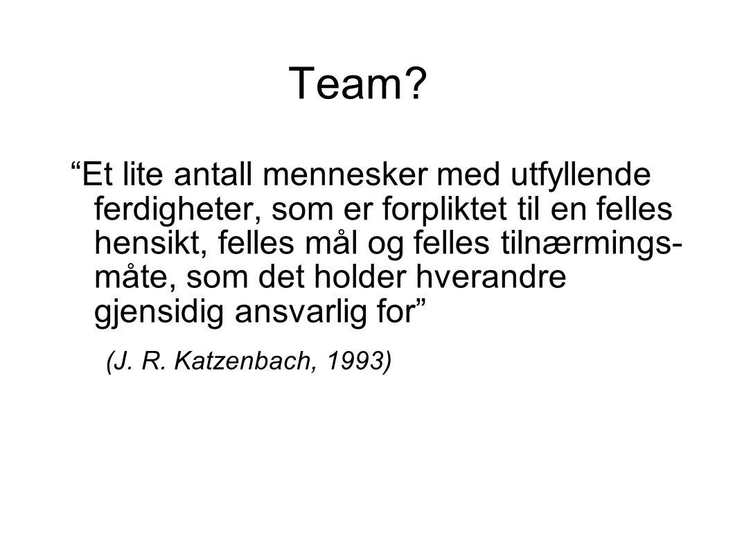 """Team? """"Et lite antall mennesker med utfyllende ferdigheter, som er forpliktet til en felles hensikt, felles mål og felles tilnærmings- måte, som det h"""