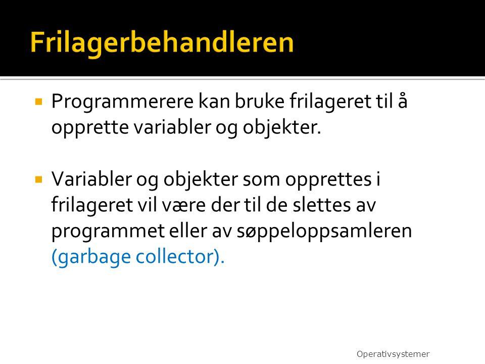  Programmerere kan bruke frilageret til å opprette variabler og objekter.