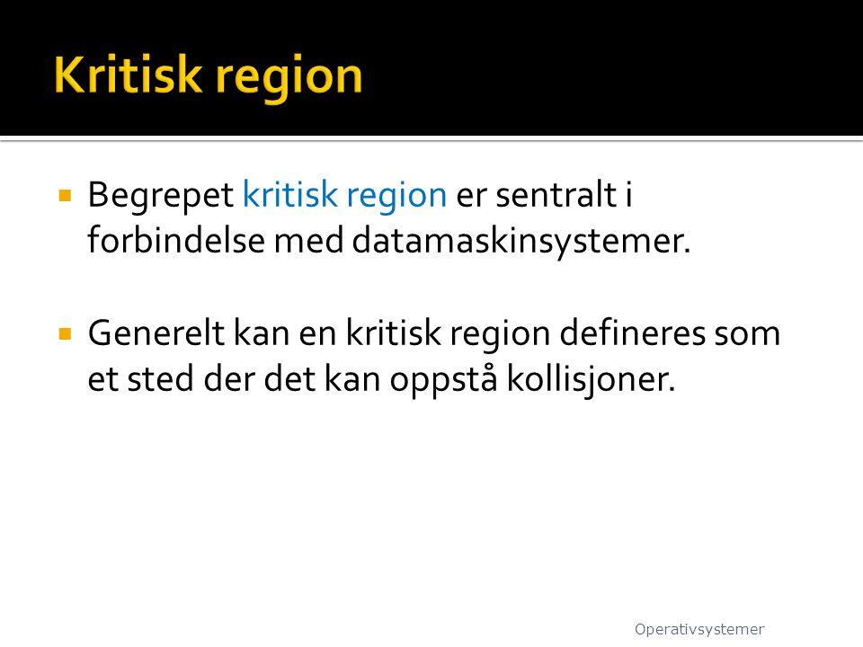  Begrepet kritisk region er sentralt i forbindelse med datamaskinsystemer.