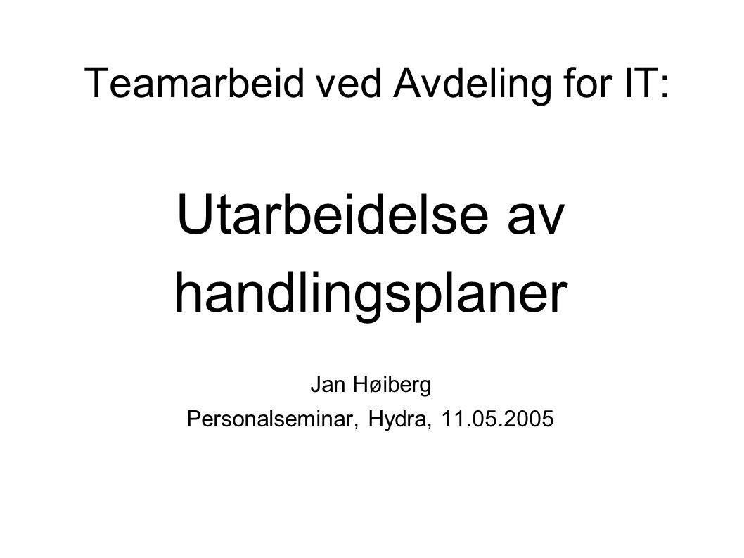 Teamarbeid ved Avdeling for IT: Utarbeidelse av handlingsplaner Jan Høiberg Personalseminar, Hydra, 11.05.2005