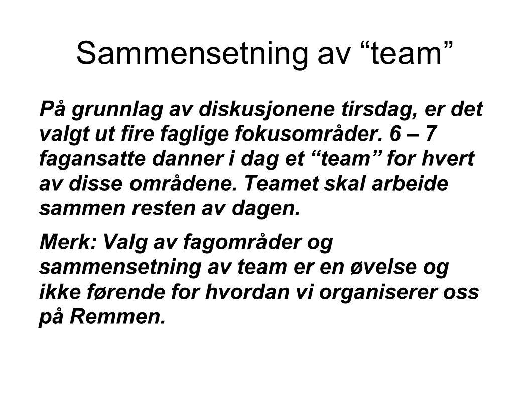 Sammensetning av team På grunnlag av diskusjonene tirsdag, er det valgt ut fire faglige fokusområder.