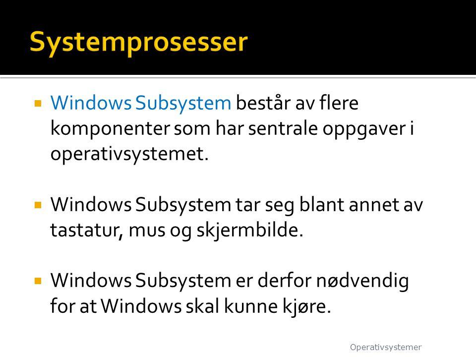  Windows Subsystem består av flere komponenter som har sentrale oppgaver i operativsystemet.  Windows Subsystem tar seg blant annet av tastatur, mus