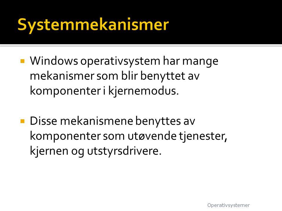  Windows operativsystem har mange mekanismer som blir benyttet av komponenter i kjernemodus.  Disse mekanismene benyttes av komponenter som utøvende