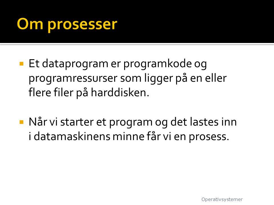  Et dataprogram er programkode og programressurser som ligger på en eller flere filer på harddisken.  Når vi starter et program og det lastes inn i