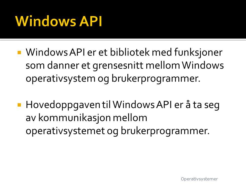  Windows API er et bibliotek med funksjoner som danner et grensesnitt mellom Windows operativsystem og brukerprogrammer.  Hovedoppgaven til Windows