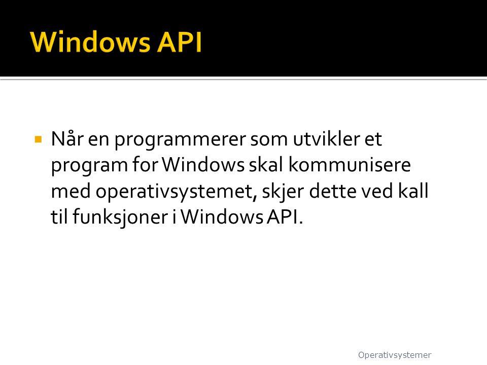  Når en programmerer som utvikler et program for Windows skal kommunisere med operativsystemet, skjer dette ved kall til funksjoner i Windows API. Op