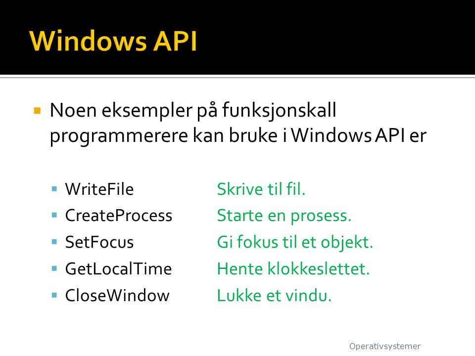  Noen eksempler på funksjonskall programmerere kan bruke i Windows API er  WriteFileSkrive til fil.  CreateProcessStarte en prosess.  SetFocusGi f