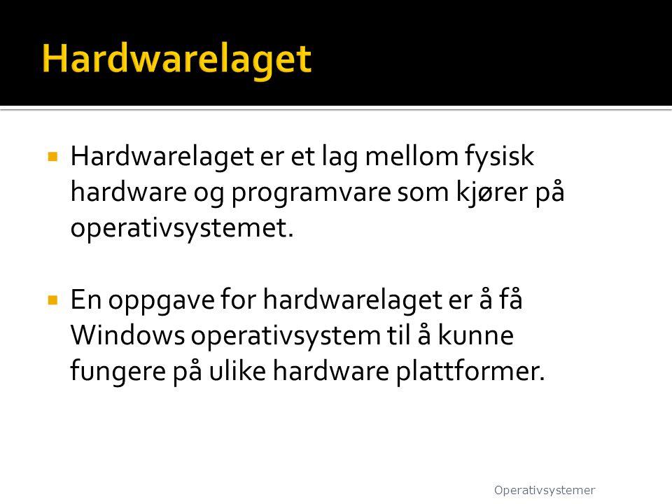  Hardwarelaget er et lag mellom fysisk hardware og programvare som kjører på operativsystemet.  En oppgave for hardwarelaget er å få Windows operati