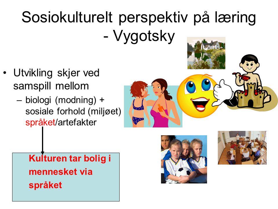 Oppgave Tilrettelegg en norsktime/mattetime med utgangspunkt ikonstruktivismen!
