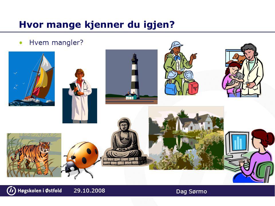 Hvor skjer læringsprosessene? 29.10.2008 Dag Sørmo