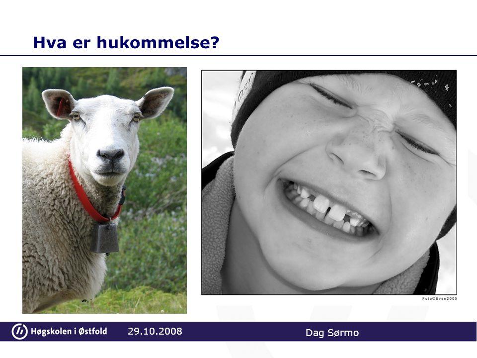 Hva er hukommelse? 29.10.2008 Dag Sørmo