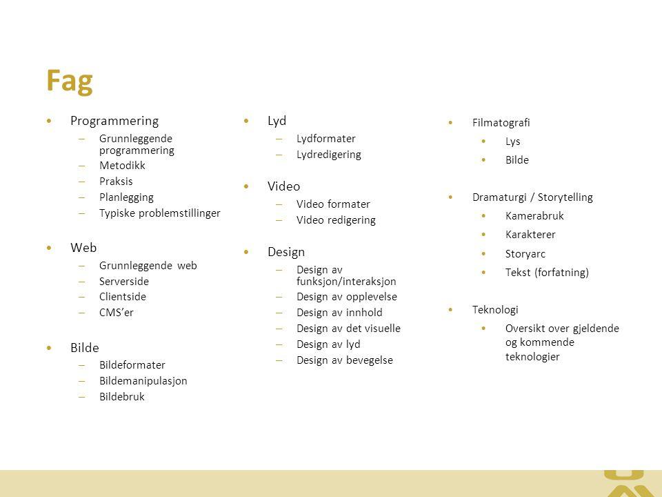Fag Programmering – Grunnleggende programmering – Metodikk – Praksis – Planlegging – Typiske problemstillinger Web – Grunnleggende web – Serverside –