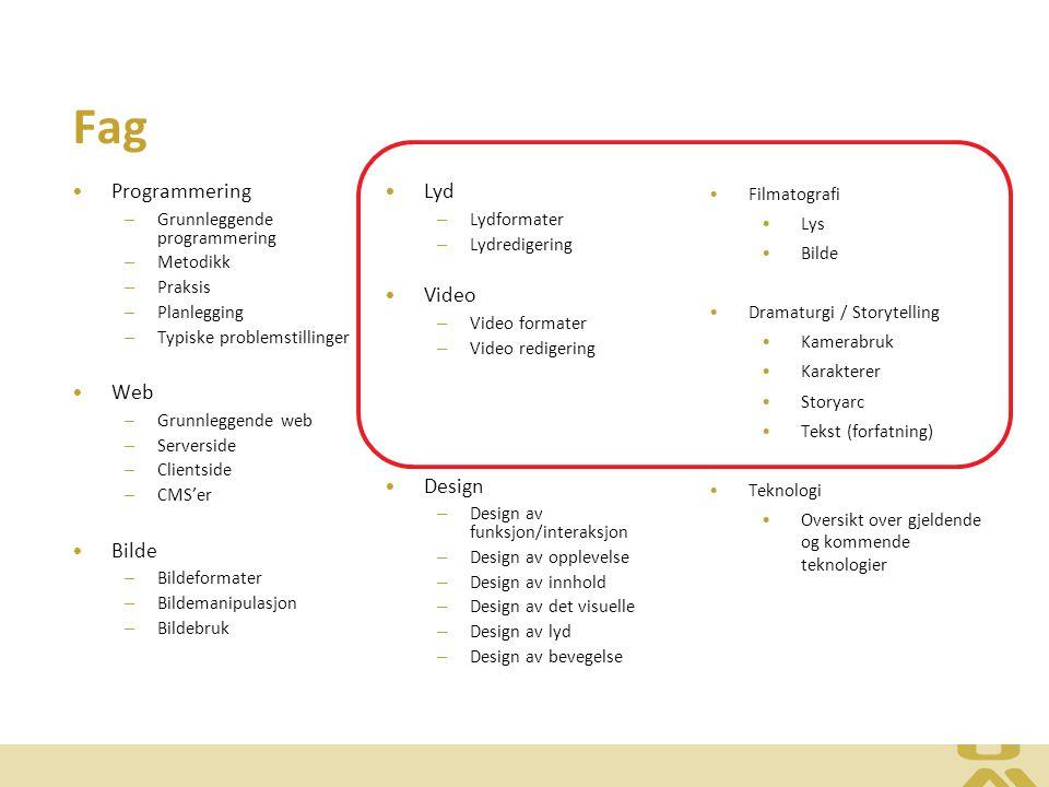 Fag Programmering – Grunnleggende programmering – Metodikk – Praksis – Planlegging – Typiske problemstillinger Web – Grunnleggende web – Serverside – Clientside – CMS'er Bilde – Bildeformater – Bildemanipulasjon – Bildebruk Lyd – Lydformater – Lydredigering Video – Video formater – Video redigering Design – Design av funksjon/interaksjon – Design av opplevelse – Design av innhold – Design av det visuelle – Design av lyd – Design av bevegelse Filmatografi Lys Bilde Dramaturgi / Storytelling Kamerabruk Karakterer Storyarc Tekst (forfatning) Teknologi Oversikt over gjeldende og kommende teknologier