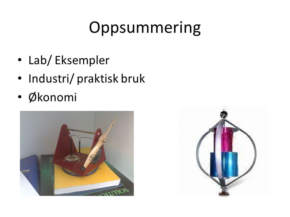 Oppsummering Lab/ Eksempler Industri/ praktisk bruk Økonomi