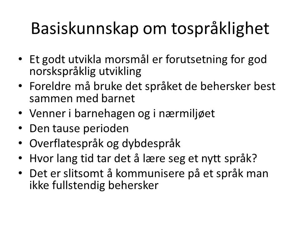 Basiskunnskap om tospråklighet Et godt utvikla morsmål er forutsetning for god norskspråklig utvikling Foreldre må bruke det språket de behersker best