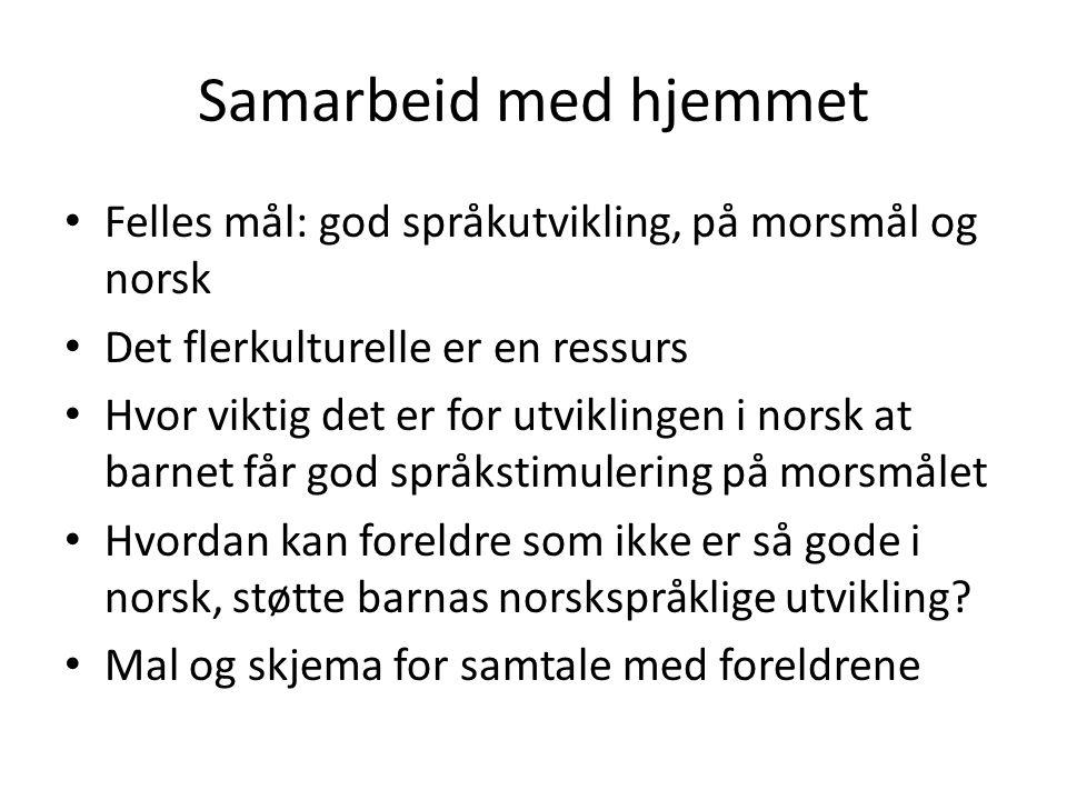 Samarbeid med hjemmet Felles mål: god språkutvikling, på morsmål og norsk Det flerkulturelle er en ressurs Hvor viktig det er for utviklingen i norsk