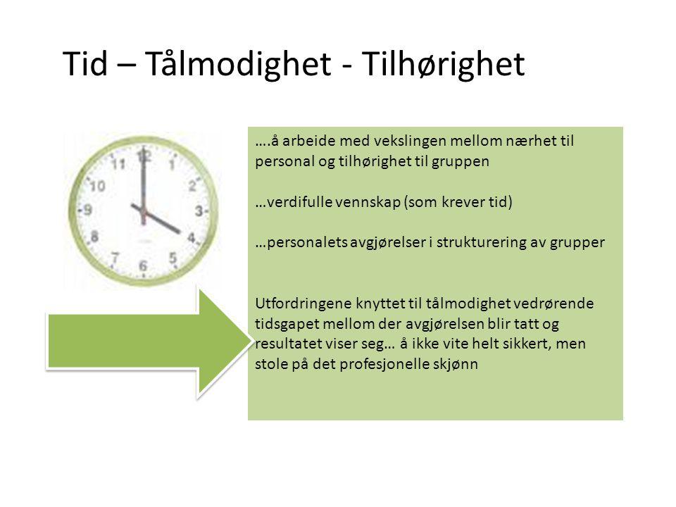 Tid – Tålmodighet - Tilhørighet ….å arbeide med vekslingen mellom nærhet til personal og tilhørighet til gruppen …verdifulle vennskap (som krever tid)